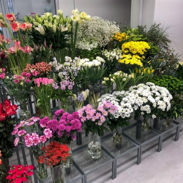 Импортные цветы