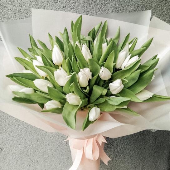 29 белых тюльпанов