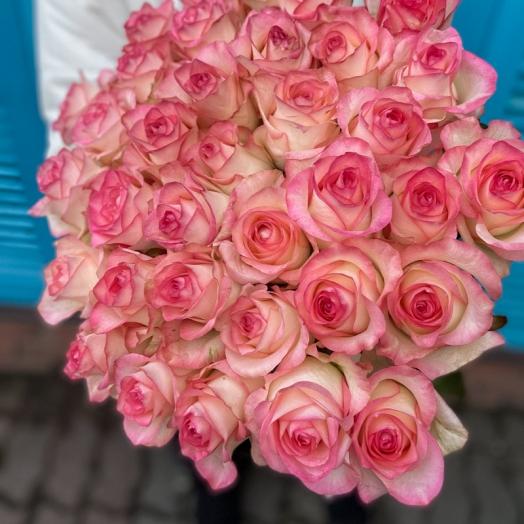 Акция на розы с 17 до 23 августа