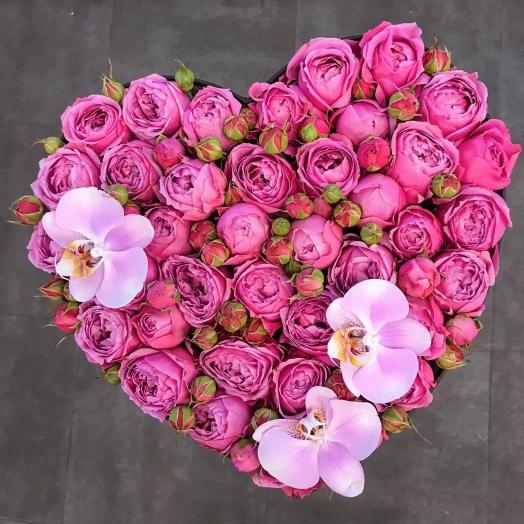 Скидка -20% на розы в новом магазине