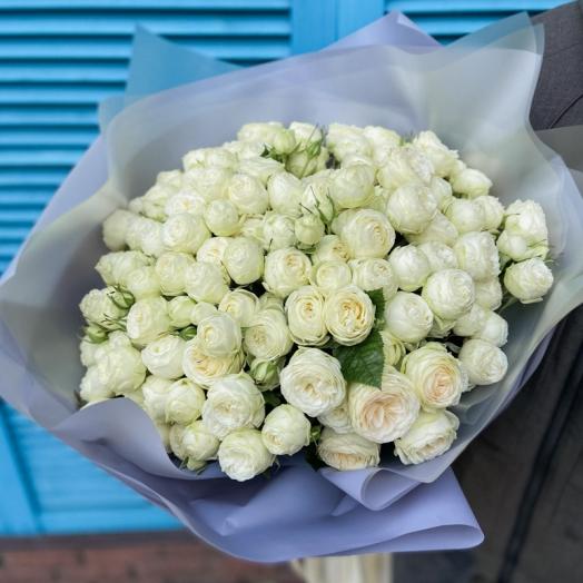 Акция на розы Сноу Ворлд с 9 до 14 июня
