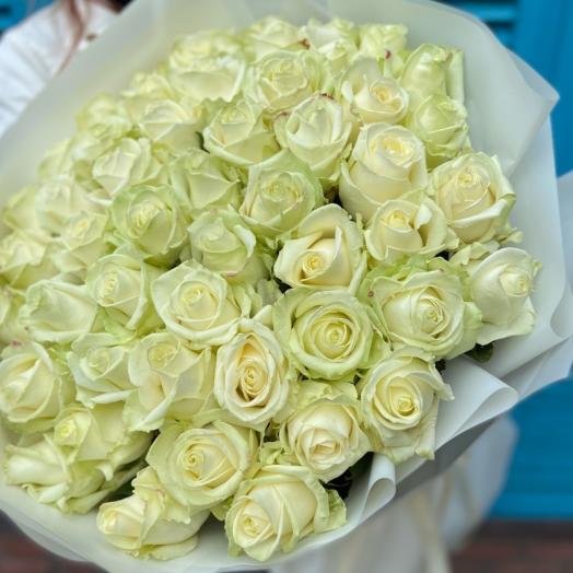 Акции на розы с 16 до 25 октября