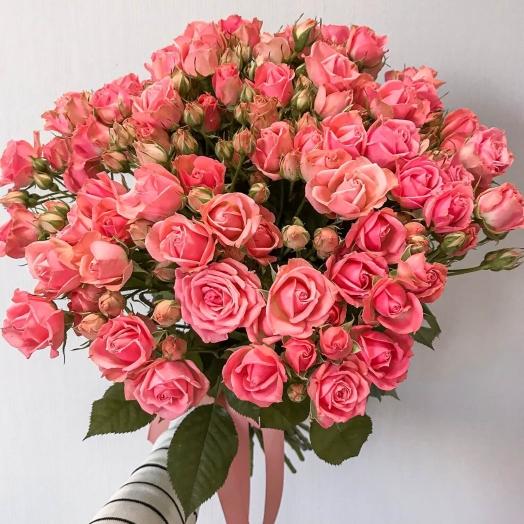 Акция на розы спрей Ванесса и Пинк Ванесса