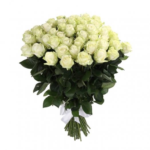 51 роза Аваланч 60 см 675 грн.