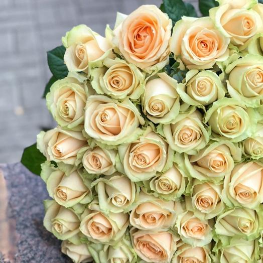 Акции на розы до 24 ноября