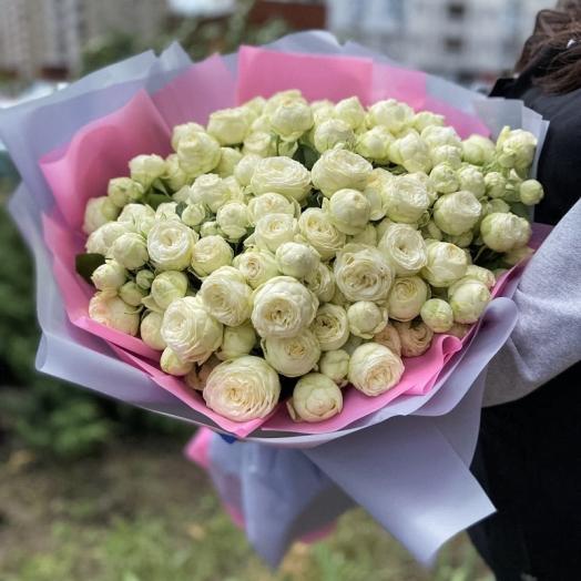 Акції на троянди з 31 липня до 9 серпня