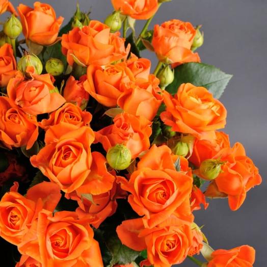 Акция на розы спрей Оранж Фаер и Пинк Ванесса