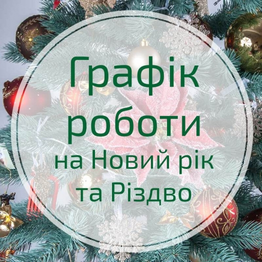 Schedule for the New Year and Christmas days
