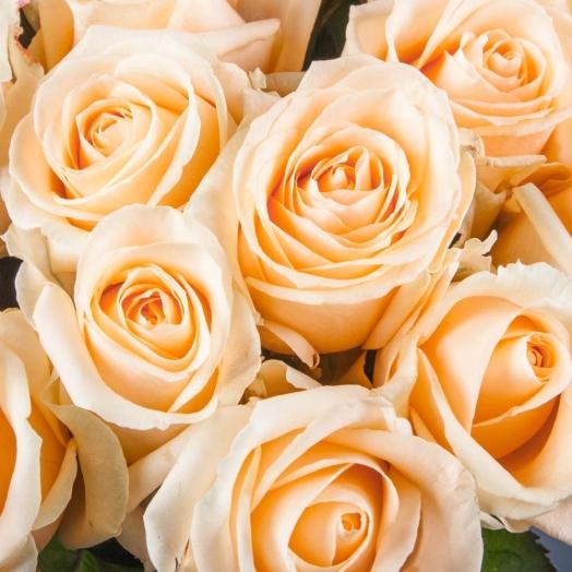 Зимняя акция на розы в сети Камелия