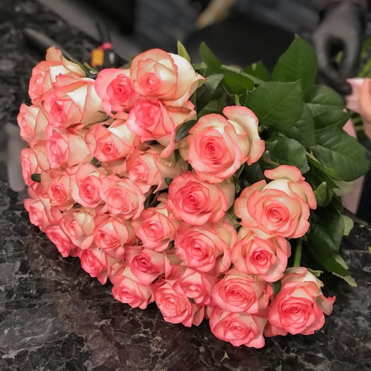 Promotion on Jumilia roses from 5 to 18 January