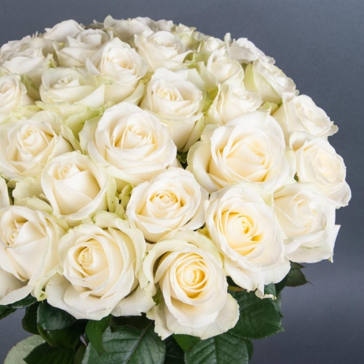 Discount on Avalanche roses