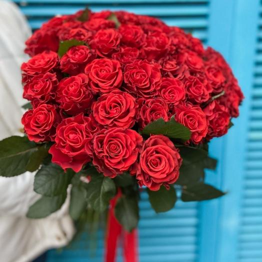 Акція на троянди Ель Торо