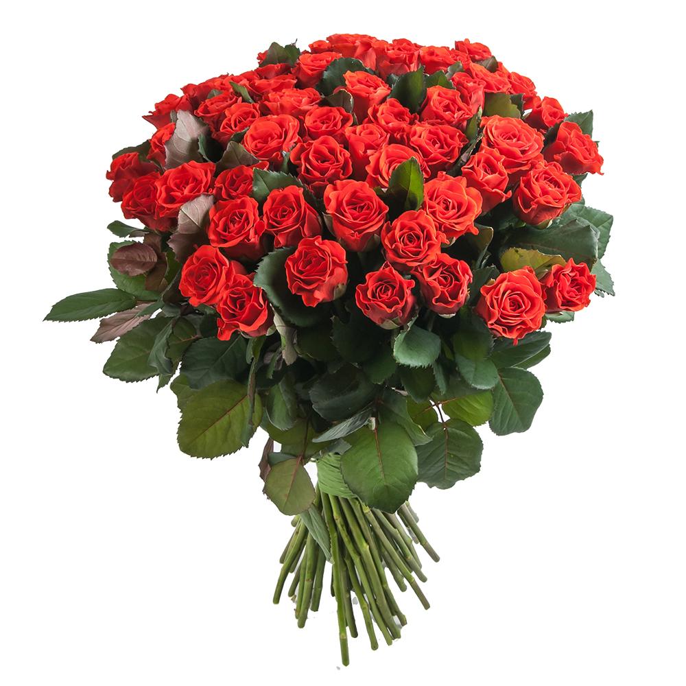 Срочная доставка роз